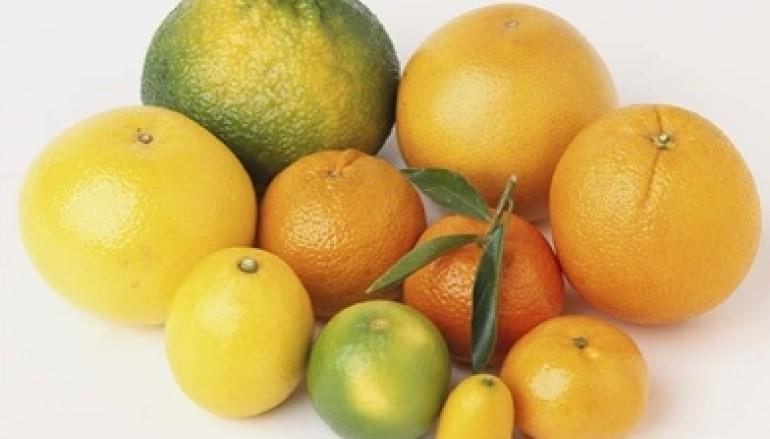 Alla scoperta degli agrumi: Un pieno di vitamina C nel periodo invernale
