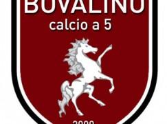 Calcio 5, stage Juniores organizzato dal Bovalino