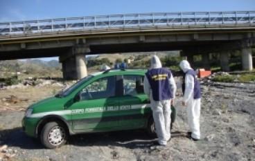 Gallico, rifiuti pericolosi lungo il torrente: una denuncia