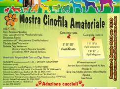 Gioiosa Jonica, sesta Mostra Cinofila amatoriale O.L.A.