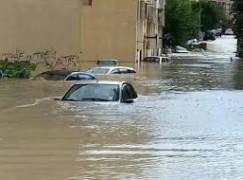 Stato calamità per agricoltori Calabria