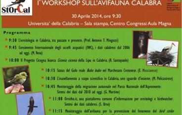 All'Unical primo workshop sull'avifauna Calabra