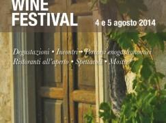 Torna a Saracena il Wine Festival