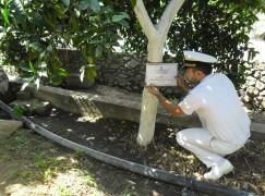 Corigliano Calabro, sequestrata vasta area del torrente Coriglianeto