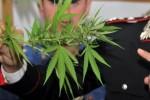 Bova Marina (RC), operaio arrestato per spaccio di droga