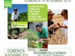 Reggio Calabria, a breve la XV edizione della Biodomenica
