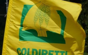 """Coldiretti Calabria a Catania per difendere il """"Made in Italy"""""""