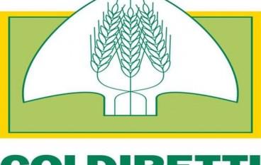 """Coldiretti Calabria: """"la regione segua il Governo Nazionale"""""""