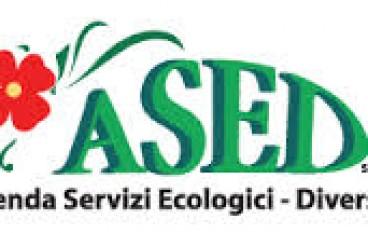 Ardore (RC): Ased, 1a giornata di sensibilizzazione ambientale
