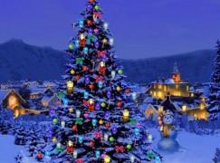 """Reggio Calabria, al via con """"Organizziamo il Natale"""""""