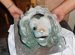 Cosenza, autentica la testa di leonina scoperta ad Africo