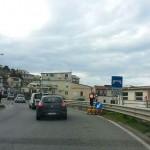 Coda-ponte-Molinello
