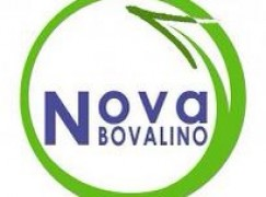 Movimento Nova Bovalino ricevuto dai Commisari straordinari
