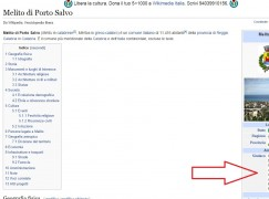 Melito Porto Salvo ed il caso Wikipedia