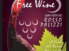 Palizzi: Festa del Vino 2015