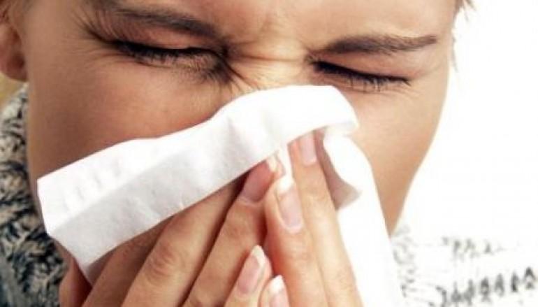 Allergie, online il report sul monitoraggio pollinico