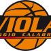 Viola Basket, colpo Freeman