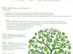 A Roccella Jonica la settima edizione della Notte Verde