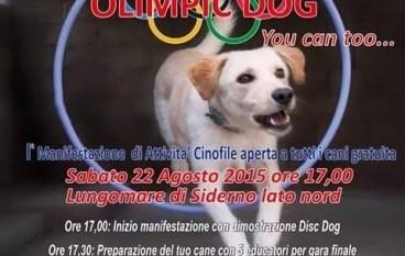 """Siderno, parte la prima edizione di """"Olimpic Dog"""""""