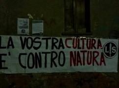 Protesta della Lotta Studentesca Calabria contro l'insegnamento della Teoria del Gender