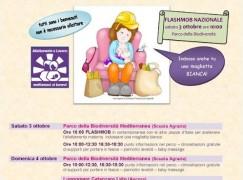 Catanzaro, al via la Settimana mondiale dell'allattamento