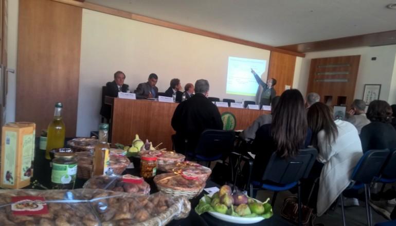 Cosenza, delegazione algerina scopre qualità del fico dottato