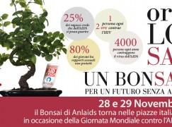 """Calabria, scende in piazza """"Un Bonsai per ANLAIDS"""""""