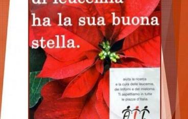 """Bagaladi, a breve: """"Stelle di Natale AIL 2015"""""""