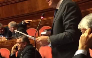 Caridi (Fi): Alluvioni in Calabria, disparità di trattamento con Parma e Piacenza