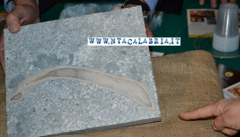 Bova, presentazione fossile Sirenio: le foto