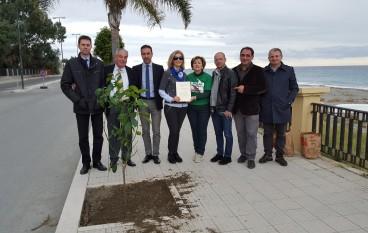 Melito, MondoVerde celebra la giornata Nazionale dell'Albero