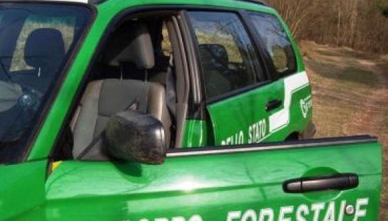 Zumpano, traffico di rifiuti: 5 arresti