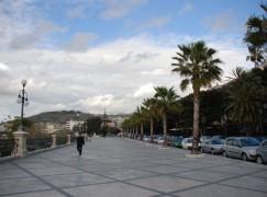 Reggio Calabria, operazioni di sfoltimento e potatura sul Lungomare