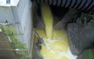 Calanna, inquinamento ambientale: denunciato proprietario frantoio