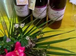 Montepaone, il Centro di Salute Mentale ha prodotto 450 bottiglie di vino