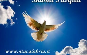 Auguri di buona Pasqua ai lettori di NtaCalabria