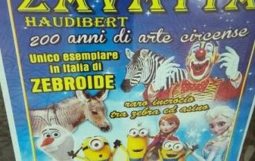 A Melito Porto Salvo arriva il Circo Zavatta