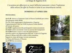 Catanzaro, escursione Cascata Campanaro e Borgo Zagarise