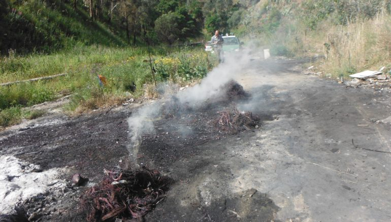 Reggio, brucia cavi elettrici per rivendere rame, denunciato