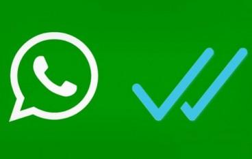 Ntacalabria su WhatsApp: ecco come attivare il servizio