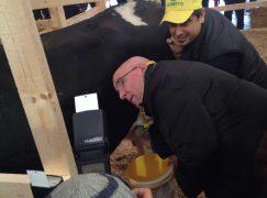 Etichettatura latte: risultato storico costruito anche in Calabria