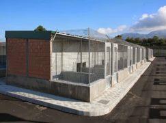 Reggio, rilevate gravi irregolarità nella gestione del canile di Mortara