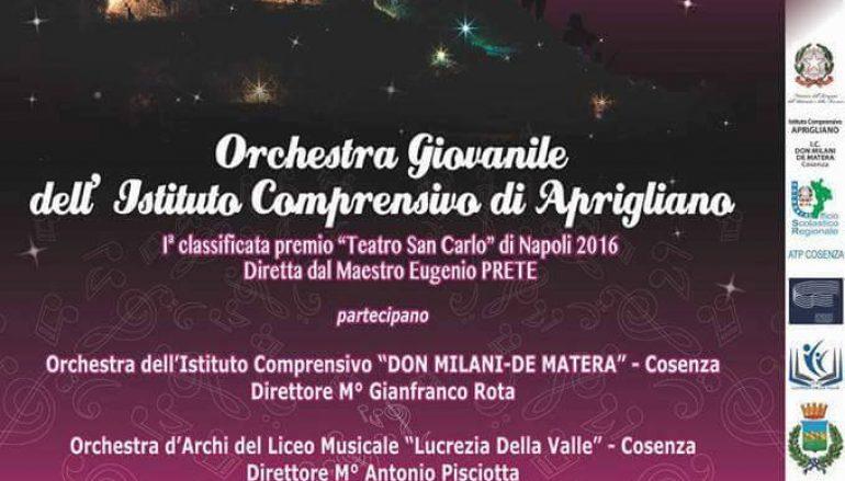 """""""Note in armonia"""" dal Teatro San Carlo al Castello Svevo di Cosenza"""