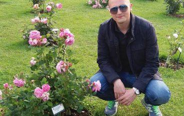 """""""La rosa è ancora viva"""": il nuovo romanzo di Stefano Morabito"""