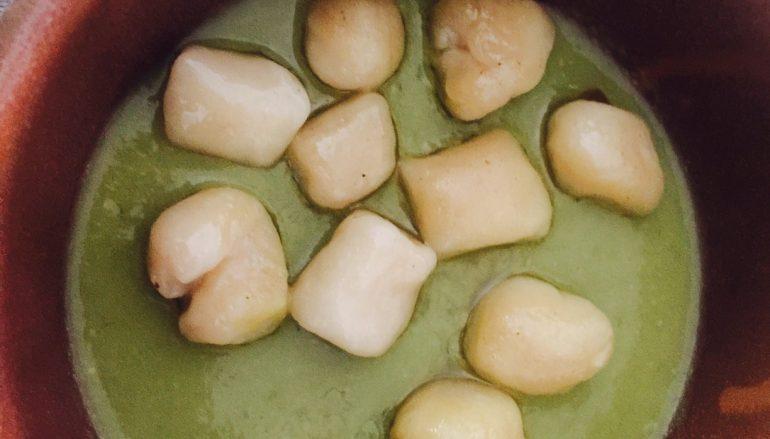 Palline di ricotta in crema di fave