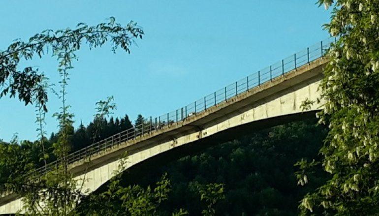 Celico (CS), Anas: precisazione su Viadotto Cannavino