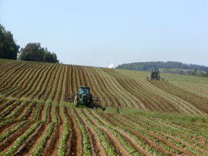 agricoltura-e-digitale