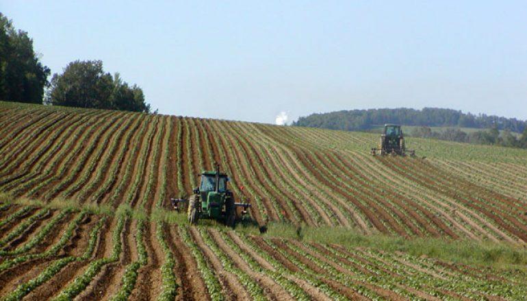 Italia, Anche le aziende agricole sfruttano il digitale
