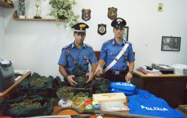 Rosarno, nascondeva droga in un terreno: arrestato