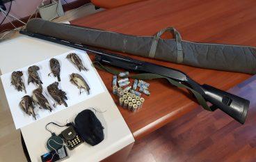 Cosenza, vasta operazione antibracconaggio della Polizia Provinciale